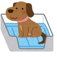 ペット臭除去の必要性