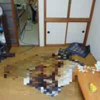 仙台市青葉区/Sアパートの特殊清掃
